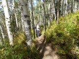 A proper trail.
